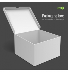 packing box vector image vector image