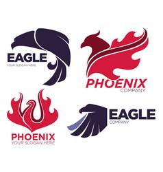 phoenix bird or fantasy eagle logo templates set vector image