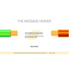 electrical insulated stranded copper wires vector image