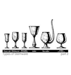 stemware types vector image vector image