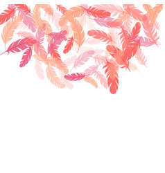 fluffy twirled feathers on white design vector image