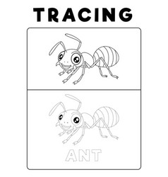 Funny ant insect animal tracing book with example vector