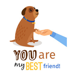 Human hand holding dogs paw vector