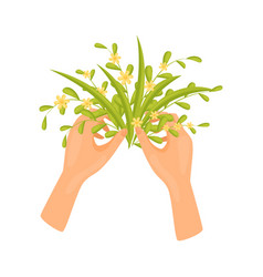 Human hands make bouquet of small yellow flowers vector