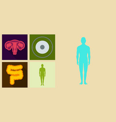 set of medecine icons in flat style with shadow vector image