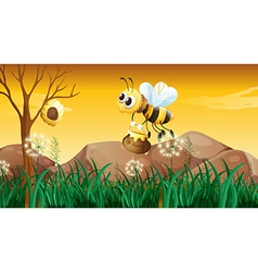 A bee flying going to the beehive vector image vector image