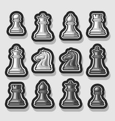 set of monochrome chess pieces vector image