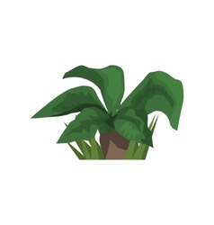 Big leaf tropical plant jungle landscape element vector