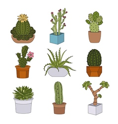 Cactuses and succulents icon set Houseplants vector image