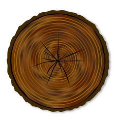 Dark log end vector