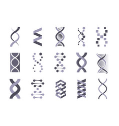 dna helix molecule silhouette set code genetic vector image