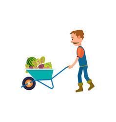 farmer with full of vegetables wheelbarrow icon vector image