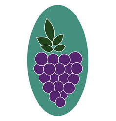 Grapes or color vector