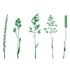 Grasses silhouettes vector