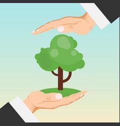 Hands holding growing tree seedlings care vector