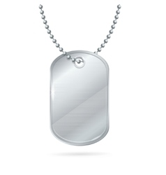 Military ID Tag Silver Army Medallion vector image