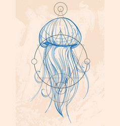Most jellyfish outline drawing the inhabitants of vector