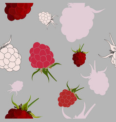 tasty raspberry seamless pattern vector image