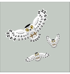 Three flying polar owls vector