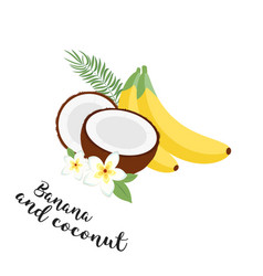 funny fruit set bananas coconuts and leaves set vector image vector image