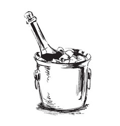 Hand sketch champagne vector