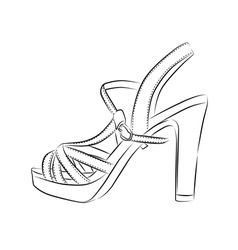 Elegant womens high heel shoe on white background vector image
