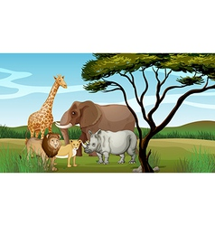 Scary animals in jungle vector