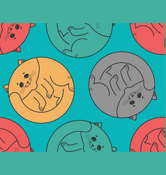 sleeping cat seamless pattern home pet sleeps vector image