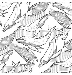 graphic humpback whale pattern vector image