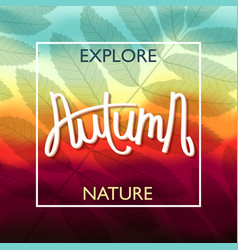 amazing autumn colors vector image