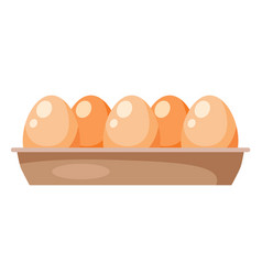 chicken eggs in carton box isolated on white vector image