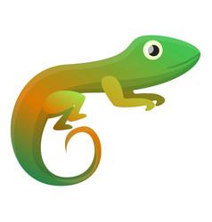 Colorful reptile icon cartoon style vector