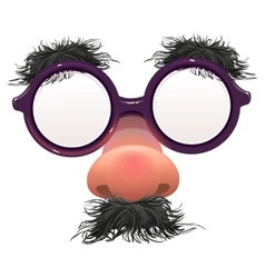 Funny glasses nose Surface nose and glasses vector image