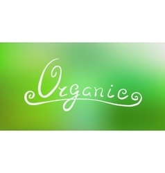 Handwritten eco lettering vector image