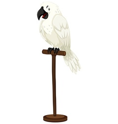 White parrot on wooden stick vector