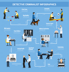 police experts flat style infographics vector image vector image