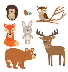 set of isolated forest animals vector image