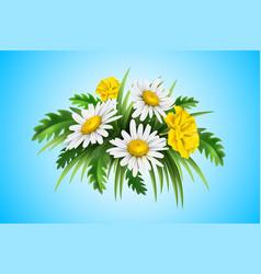 3d yellow diasy cornflower elegant bouquet vector image