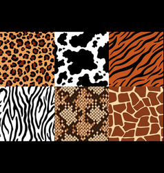 animal skins pattern leopard leather fabric vector image