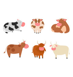 Bulls cows farm animal character vector