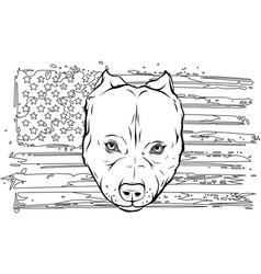 Draw in black and white head aggressive vector