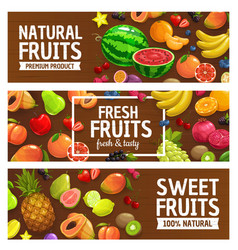 fresh fruits and berries on wood background vector image