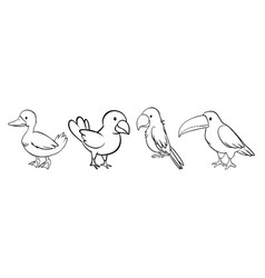 Set bird outline vector