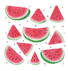 set markers hand drawn watermelon slices on vector image