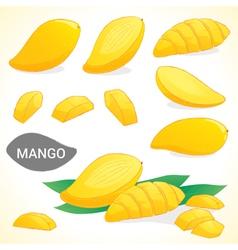 Set of mango in various styles vector