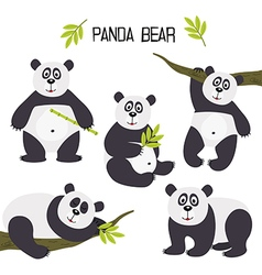 set of isolated panda bear vector image