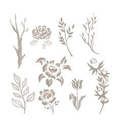 Hand Drawn Plant Monochrome Set vector image vector image