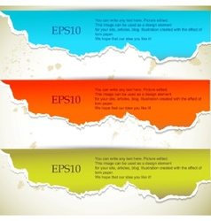 torn paper banners with space for text vector image vector image