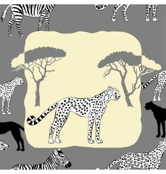 Cheetah between savannah trees vector image vector image