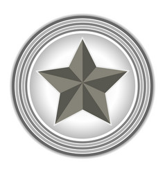 American symbol star icon vector